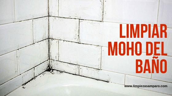 limpiar moho del baño