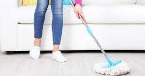 limpieza del día