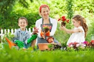 Quédate en casa jardinería