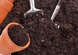 preparar tierra para huerto